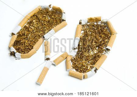 Close up of broken cigarettes and tobacco shaping lungs on the white background