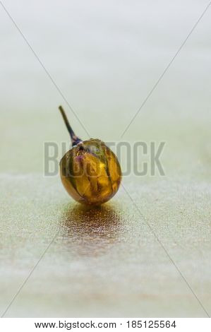 Flower inside of ball shaped crystal made of epoxy resin close-up with bokeh on toned background shallow depth of field poster
