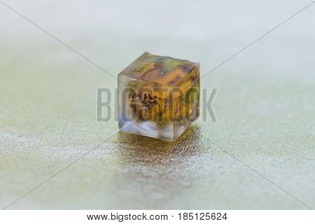 Crystal Made Of Epoxy Resin And Rose