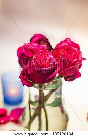Pink Rose Buds In Vase