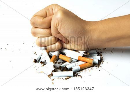 Woman hand destroying cigarettes concept of quit smoking isolated on white background