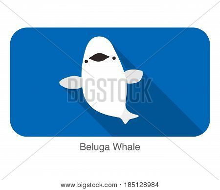 Beluga Whale Swimming In The Water