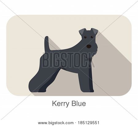 Kerry Blue Terrier Standing An Watching, Flat Icon Design
