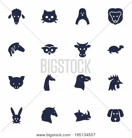 Set Of 16 Beast Icons Set.Collection Of Bunny, Aquila, Pussy And Other Elements.