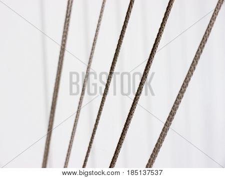 The rope object and backgrounds.