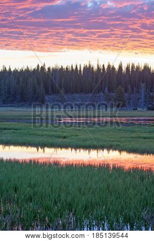 Pink blue and Yellow Sunrise over Pelican Creek in Yellowstone National Park in Wyoming USA