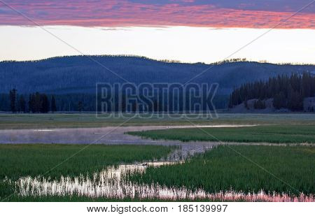 Pink Sunrise Dawn over Pelican Creek in Yellowstone National Park in Wyoming USA