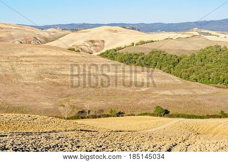 Autumn rolling hills in Crete Senesi close to Pienza - Tuscany, Italy