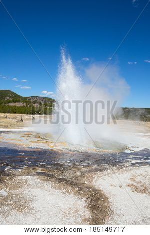Jewel geyser eruption in the Yellowstone national park, USA