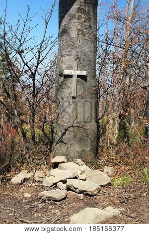 grave of a pet, mound of stones and wooden cross on the tree above it