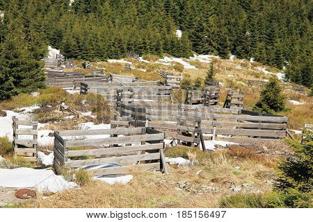 some wooden fences for protection of young trees against deer, Beskydy mountains, Czech Republic