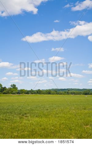 Blue Sky, White Cloud And Green Grass