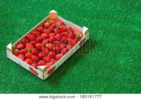 Strawberries in a wooden box on grass. A group of strawberries inside a wooden box resting on a background of (artificial) grass. Very detailed photo taken with macro lens, full of details.