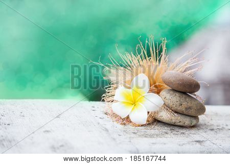 Thai relax beauty still life with stones and frangipany plumeria flower