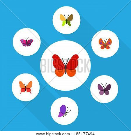 Flat Monarch Set Of Danaus Plexippus, Violet Wing, Beauty Fly And Other Vector Objects. Also Includes Summer, Archippus, Insect Elements.