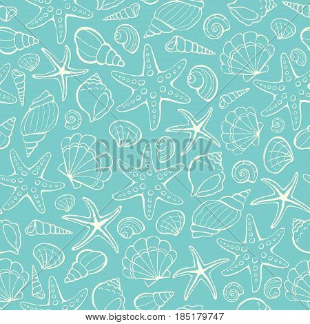 Seamless background from hand drawn sea shells and stars. Marine illustration of shellfish.