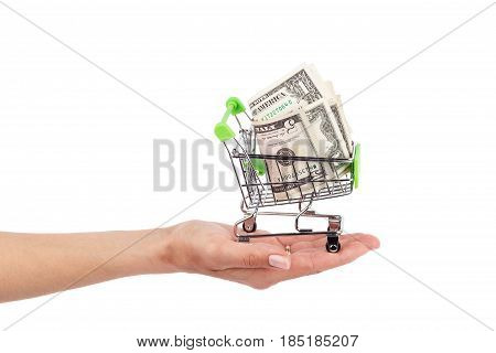 American Dollars In The Shopping Pushcart, Isolated