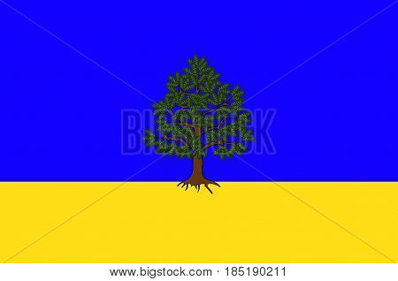 Flag of Chateau-Chinon is a commune in the Nievre department in France. Vector illustration