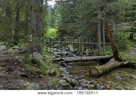 Mountain landscape with  river and broken wooden bridge in forest from tempest, Rila mountain,   Bulgaria