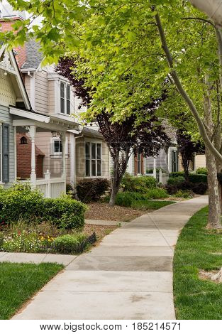 Single family homes along concrete footpath in California tree lined residential sub division