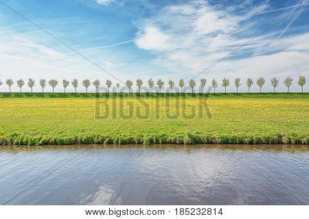 Dike with a row of trees in the Beemster Polder a cultural landscape located north of Amsterdam dating from the early 17th century and an exceptional example of reclaimed land in the Netherlands