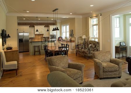 open living room and kitchen