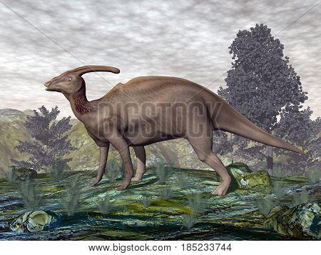 Parasaurolophus dinosaur walking next to gingko trees and onychiopsis plants - 3D render