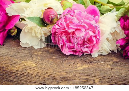 Spring flowers Peony background. Fuchsia pink and white peonies on rustic wooden table with place for text. Happy Mothers Day greetings card. Mother's gift. Copy space.