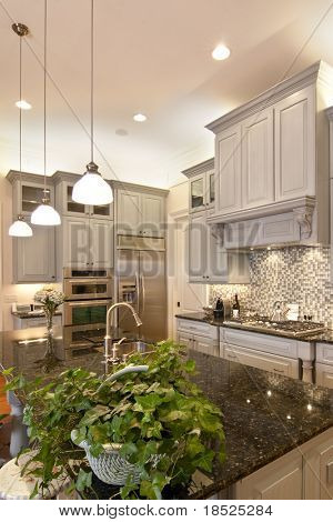 luxurious kitchen with granite and glass, vertical shot