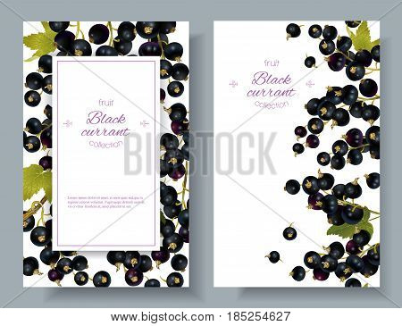Vector black currant vertical banners on white background. Design for sweets and pastries filled with berry, dessert menu, natural cosmetics, health care products. With place for text
