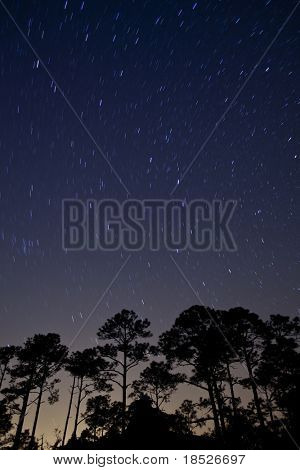 star trails of time passing over forest