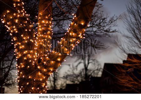 Up close exterior nighttime shallow depth of field stock photo of tree wrapped with christmas lights with semi cloudy night sky in background.