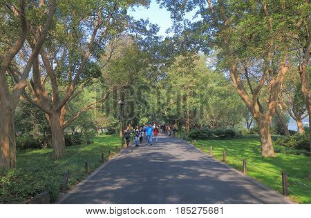 HANGZHOU CHINA - NOVEMBER 5, 2016: Unidentified people visit Su causeway in West lake.