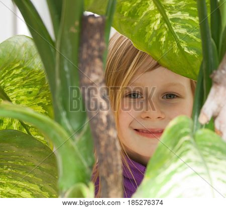 dieffenbachia, portrait, little girl seven years old, surrounded by leaves diffenbachia, botanical garden, looks camera, smiling, long wheat hair, happy child, bright day, lilac jacket, front, hide