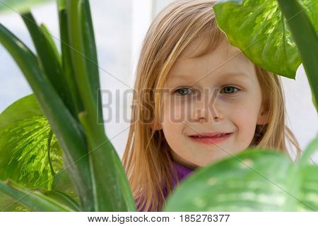 dieffenbachia, portrait, little girl seven years old, surrounded by leaves diffenbachia, botanical garden, looking away, smiling, long wheat hair, happy child, bright day, lilac jacket, front, hide