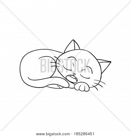 Vector of Cat Cartoon - Coloring & Drawing Book