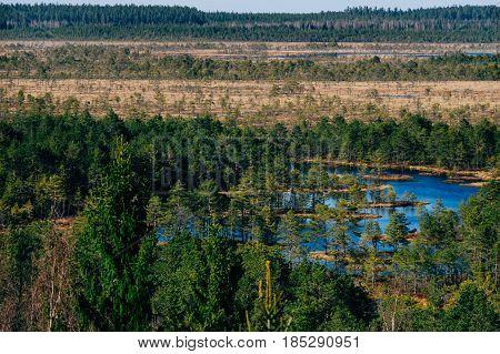 Konnu Suursoo bog aerial view by early spring Harju county Estonia