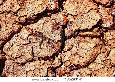 surface of dry soil cracked in the summer.