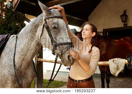 Young woman harnessing horse outdoors over stall putting on reins.