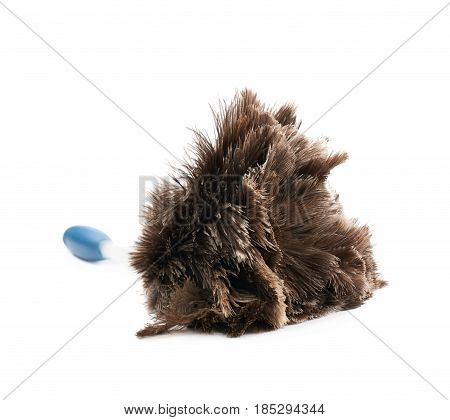 Feather stick duster isolated over the white background