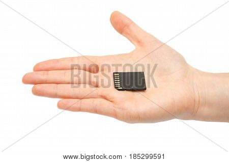 Woman Hand Holding Sd Flash Card.