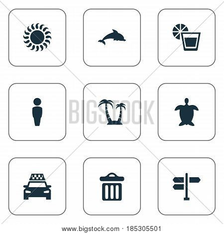 Vector Illustration Set Of Simple Seaside Icons. Elements Tortoise, Palm, Mammal Fish And Other Synonyms Mammalian, Adventure And Sun.