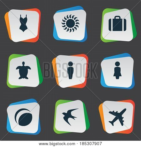 Vector Illustration Set Of Simple Beach Icons. Elements Swallow, Woman, Tortoise And Other Synonyms Luggage, Beach And Man.
