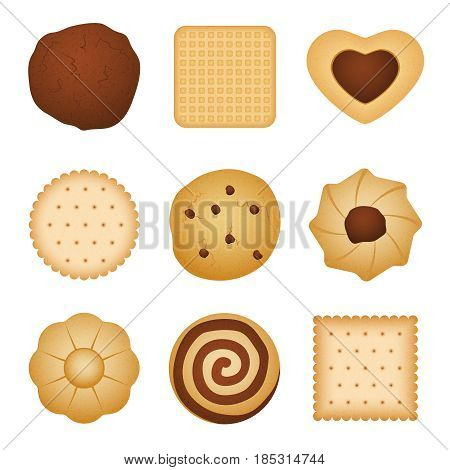 Different shapes of eating biscuit home made cookies, food for breakfast vector set. Sweet dessert biscuit, illustration of sweet snack with chocolate