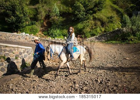 East Java,indonesia-may 04 : Tourists Ride The Horse To Viewpoint On Mount Penanjakan,the Best Views