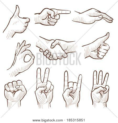 Hand drawing sketch man hands showing different gestures vector set. Sketch drawing hand gesture, illustration of hand gesture