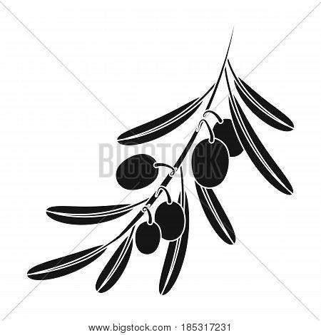 Olive branch.Olives single icon in black style vector symbol stock illustration .
