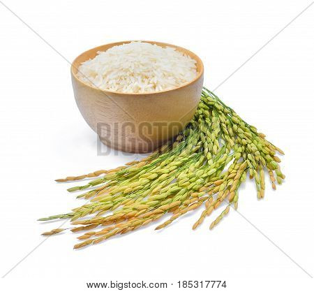 white rice (Thai Jasmine rice) and unmilled rice isolated on white background