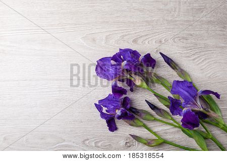 Wooden background with iris flowers. Fresh iris flowers. Space for text.