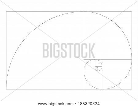 Golden ration section line frame vector composition